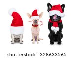 Group Of Santa Claus Dogs  For...