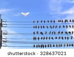 white pigeon was graceful wings ... | Shutterstock . vector #328637021