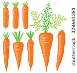 vector carrots. collection of... | Shutterstock .eps vector #328661381