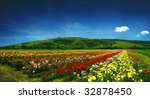 Stock photo beautiful field full of roses panorama 32878450