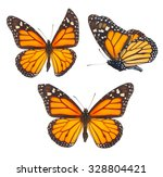 Stock photo set of orange monarch butterflies isolated on white background 328804421