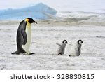 Emperor Penguin With Two Chick...