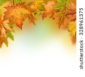 fall background with orange ... | Shutterstock . vector #328961375