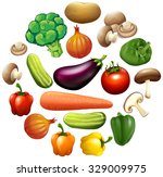 different kind of vegetables... | Shutterstock .eps vector #329009975