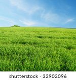 green grass and blue sky | Shutterstock . vector #32902096