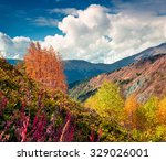 colorful autumn morning in the... | Shutterstock . vector #329026001