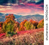 colorful autumn sunrise in the...   Shutterstock . vector #329026124