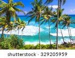 wild beautiful beaches of sri... | Shutterstock . vector #329205959