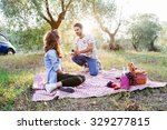 young loving couple at a picnic ... | Shutterstock . vector #329277815