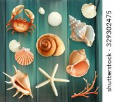 Seashells  Set Vector Icons