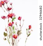watercolor painting of flowers  ... | Shutterstock . vector #32946682