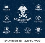 vintage nautical labels or... | Shutterstock .eps vector #329507909