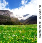 Colorful flower covered meadow in the German Alps - stock photo