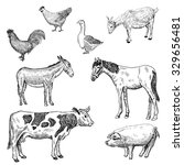 Farm Animals. . Hand Drawn Set...