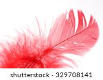 Red Feather In The White