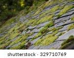 Green Moss On Slate Roof Tiles