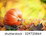 Pumpkin On Autumn Leaves With...