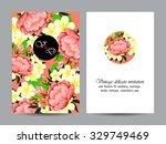 vintage delicate invitation... | Shutterstock .eps vector #329749469