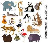 set of zoo cartoon animals... | Shutterstock . vector #329834861