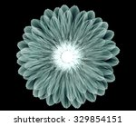 xray image of a flower ... | Shutterstock . vector #329854151