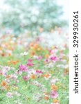 colorful cosmos | Shutterstock . vector #329930261