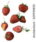 watercolor strawberries set... | Shutterstock . vector #329939855
