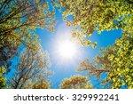 spring summer sun shining... | Shutterstock . vector #329992241