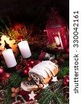christmas poppy seed cake | Shutterstock . vector #330042161