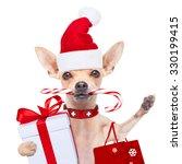 Chihuahua Santa Claus   Dog ...