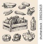 Vector Hand Drawn Food Sketch...