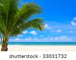 palm tree on beach background | Shutterstock . vector #33031732