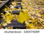 Small photo of Rails and Shapley in a small railway strewn with fallen autumn leaves, late golden autumn, bright colors, cool, fog, closeup