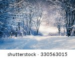 Winter Landscape In Snow Fores...