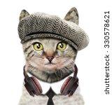 Stock photo t shirt graphics cute cat illustration watercolor cat cat poster cat graphics for textiles musician 330578621
