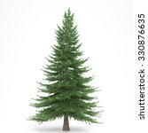Fir Tree Isolated