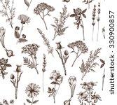 botanical design with hand... | Shutterstock . vector #330900857