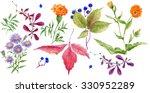 set of watercolor drawing wild... | Shutterstock . vector #330952289
