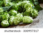 green hop cones with leaves on... | Shutterstock . vector #330957317