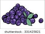 blueberries | Shutterstock . vector #331425821