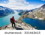 traveler with backpack and... | Shutterstock . vector #331463615