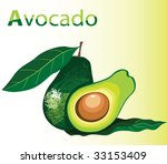 illustration of fresh avocado | Shutterstock .eps vector #33153409