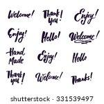 hand drawn elegant catchwords... | Shutterstock .eps vector #331539497