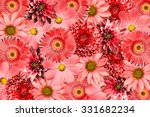 vintage background with red... | Shutterstock . vector #331682234
