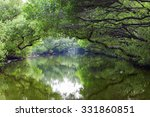 sicao green tunnel in tainan ... | Shutterstock . vector #331860851