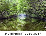 sicao green tunnel in tainan ... | Shutterstock . vector #331860857