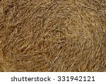 Texture Hay Closeup In Color....