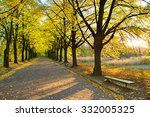 Autumn Alley And Empty Bench I...