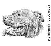 sketch of dog pit bull terrier. ... | Shutterstock .eps vector #332035835