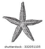 starfish  vintage engraved... | Shutterstock .eps vector #332051105
