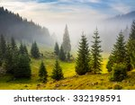 fir trees on meadow between... | Shutterstock . vector #332198591